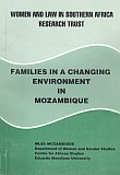 Families in a Changing Environment: Book cover